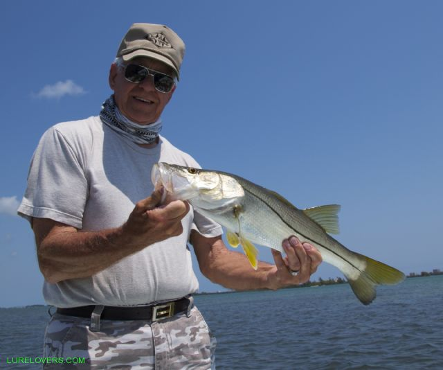 2nd day snook fishing in florida lurelovers australian for Snook fishing lures